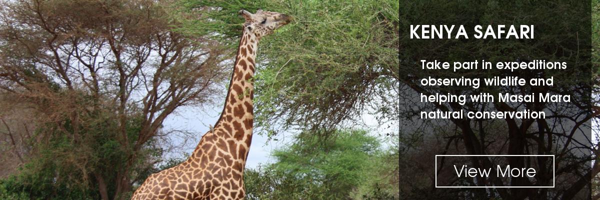 Slide: Kenya Expedition